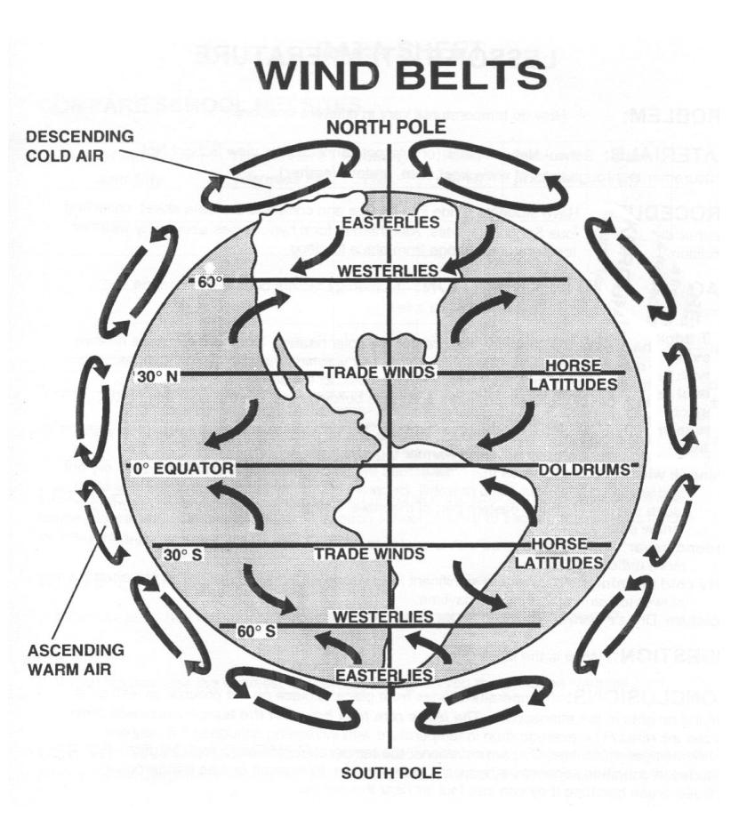 Global Wind Patterns and Convection | Earth Science | Pinterest ...